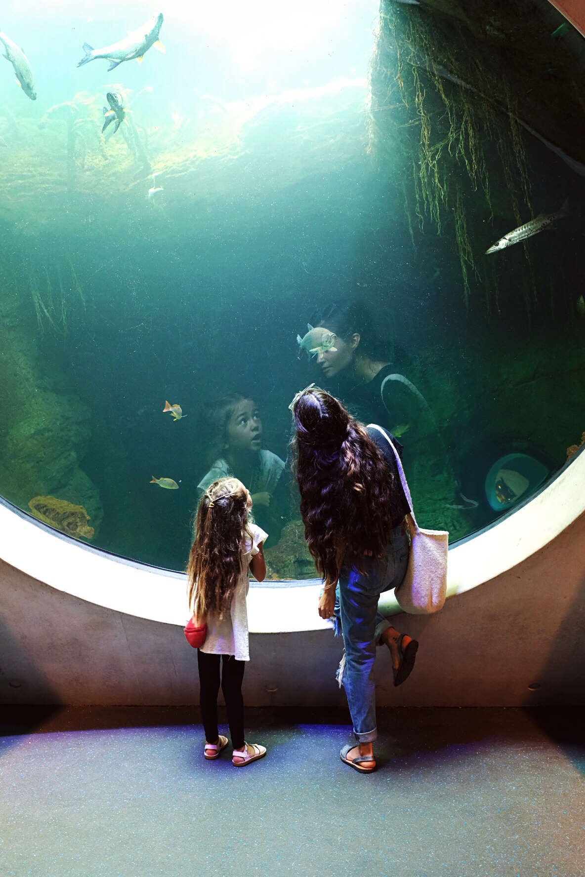 VISIT FLORIDA: A List Of The Best Family Friendly Activities In South Florida
